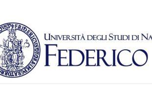 Fundraising Manager alla Federico II