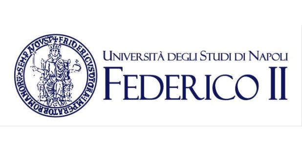 Fundraising Manager alla Federico II