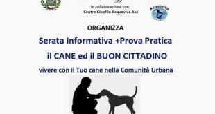 Il cane ed il buon cittadino