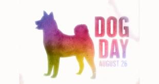 La Giornata Internazionale del Cane