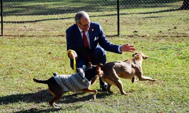 City opens Midtown dog park