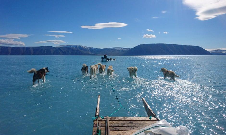 Une photo dramatique montre l'étendue de la fonte des glaces de mer au Groenland