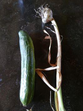 Garlic and cucumber