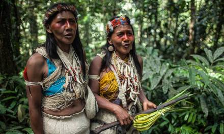 Les peuples indigènes sont peut-être le dernier espoir de l'Amazonie
