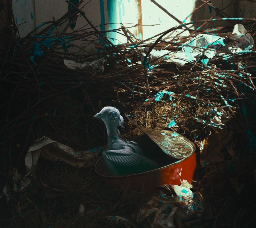 La Guarimba International Film Festival, El tornillo de Klaus, Apocalypse Justyna Mytnik, POLAND, La Guarimba International Film Festival Selection 2017, short film festival,