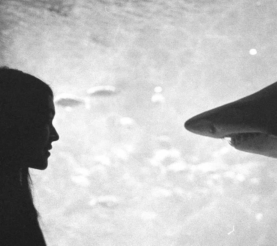 HOISSURU Armand Rovira, 2017, Spain short film, La Guarimba International Film Festival, El tornillo de Klaus, best short film festivals, guarimba selection 2018, guarimba selección 2018, Short film Selection 2018, best 2017 short films, experimental film,