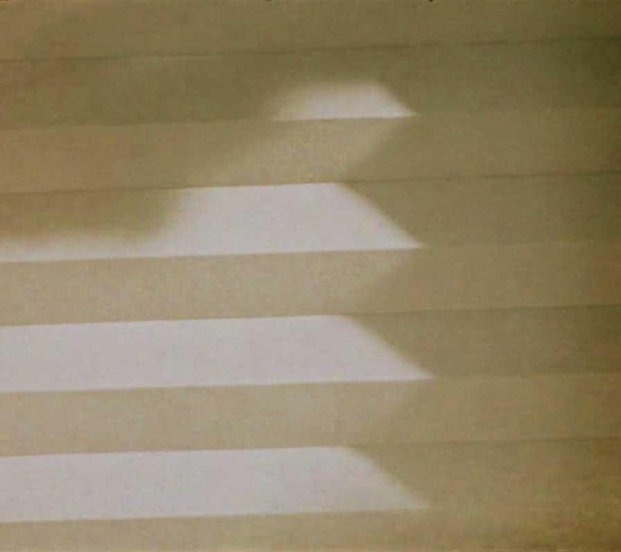 THE JUNGLE KNOWS YOU BETTER THAN YOU DO Juanita Onzaga, 2017, Colombia short film, La Guarimba International Film Festival, El tornillo de Klaus, best short film festivals, guarimba selection 2018, guarimba selección 2018, Short film Selection 2018, best 2017 short films, experimental film,
