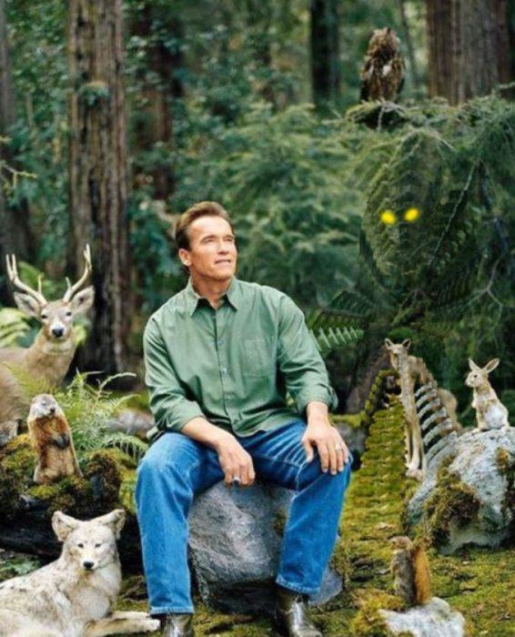 foto de Arnold Schwarzenegger memes