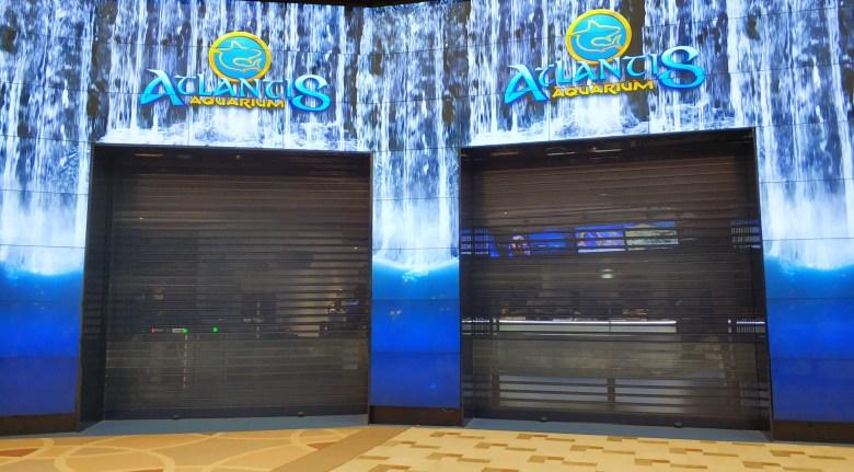 Atlantis aquarium LGDL (4)
