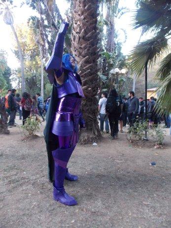 FAN_VIÑA_2015_SABADO (114)