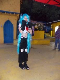 FAN_VIÑA_2015_SABADO (176)