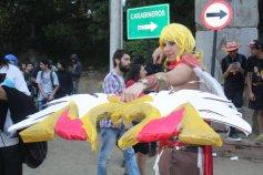 FAN_VIÑA_2015_SABADO (210)