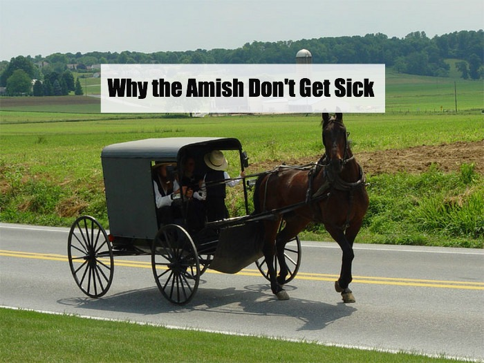 why-the-amish-don't-get-sick