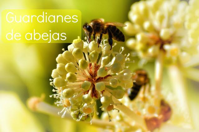 Guardianes de abejas