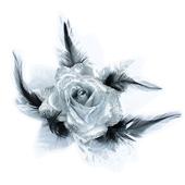 Iso ruusu