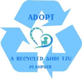 Go blue! Adopt a Recycled Shih Tzu Lend A Helping Paw Shih Tzu Rescue #LAHPSTR