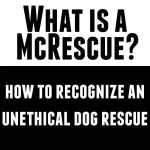 McRescue: Unethical dog Rescue vs Ethical Dog Rescue