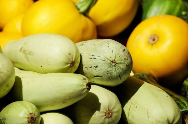 zucchini-1605792_1920