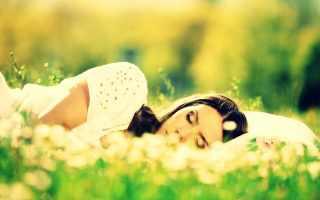 Top 10 Plantas que te ayudan a dormir