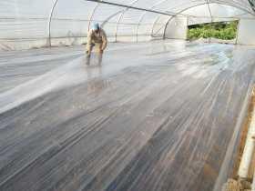 Como Combatir Plagas bajo Tierra: Biosolarización y Solarización