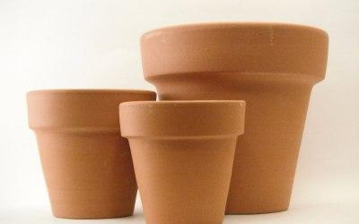 Como Limpiar Nuestras Macetas De Barro o Ceramica Para Reutilizar