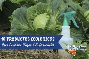 10 Productos Ecológicos Para Combatir Plagas Y Enfermedades