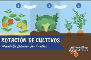 Como Hacer Rotación De Cultivos Por Familias