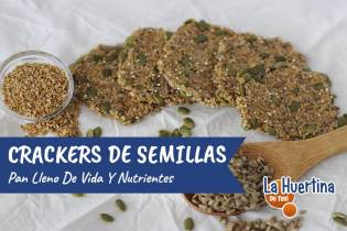 Crackers de Semillas o Pan Saludable