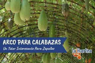 Como Hacer Arco Para Entutorar Calabazas, Pepinos, Melones… En El Huerto