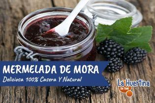 Como Hacer Mermelada De Mora Casera 100% Natural