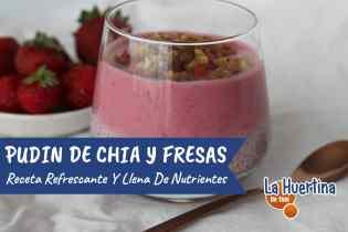 Pudin de Chía y Fresas, saludable y delicioso