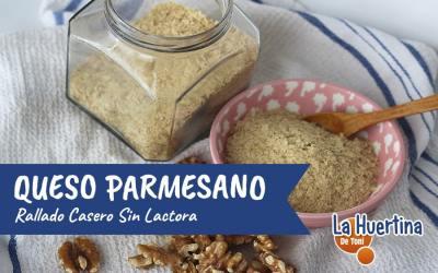 Queso Parmesano Rallado Casero, Sin Lactosa, en 5 minutos