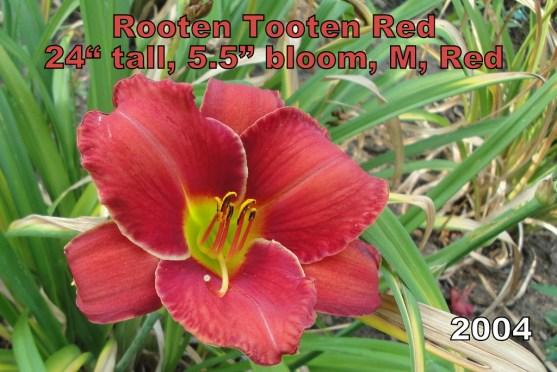 Rooten Tooten Red
