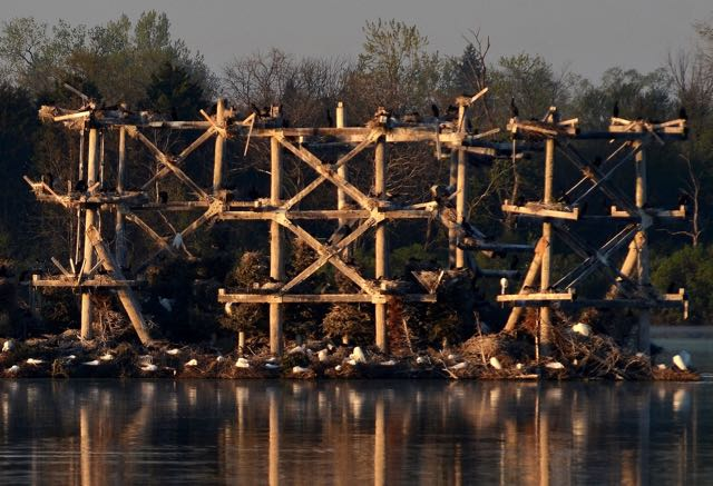 Baker's Lake, Barrington Il Photo by Cheepshot from Flickr https://www.flickr.com/photos/23755697@N04/8724069294/in/photolist-e9wHaM-ehV8RQ-nnQkq4-ehPoLV