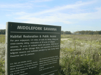 Middlefork Savanna