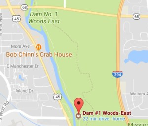 Dam #1 Forest Preserve Des Plaines River