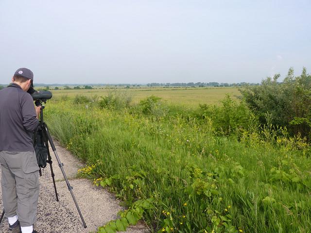 Midewin National Tall Grass Prairie
