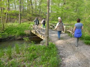 Reed Turner Woodland Preserve @ Reed Turner Woodland Preserve   Long Grove   Illinois   United States