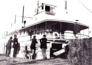 SS Aberdeen, 1915