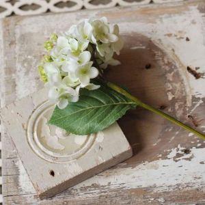 Hydrangea Pick Cream
