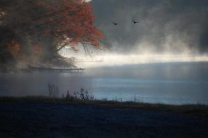 Misty Lake Glenville Morning by Marge Jacques