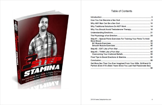 3 Step Stamina Table of Contents