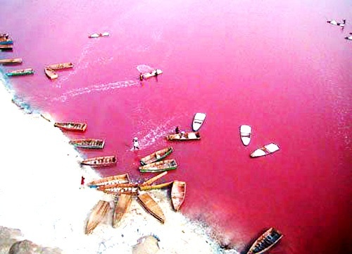 Resultado de imagen para Lake Retba, Senegal