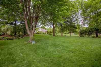 Back yard w/mature trees