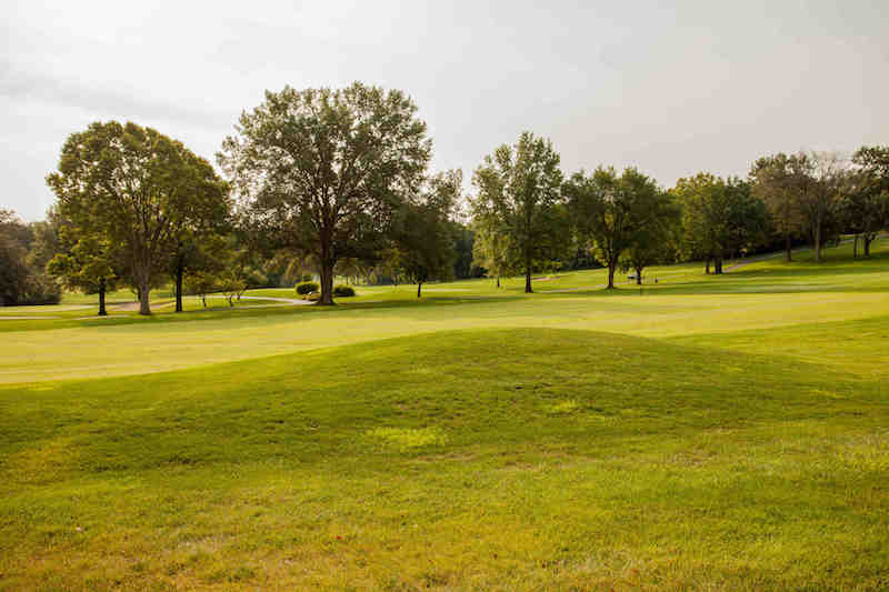 Backs up to 5th hole at Lake Forest Country Club!