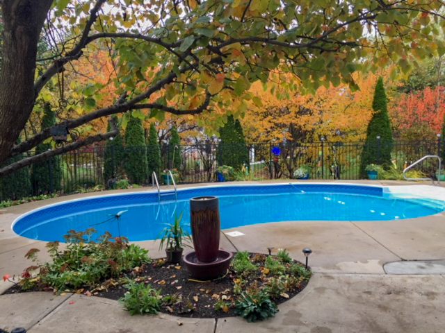 Pool w/ample privacy