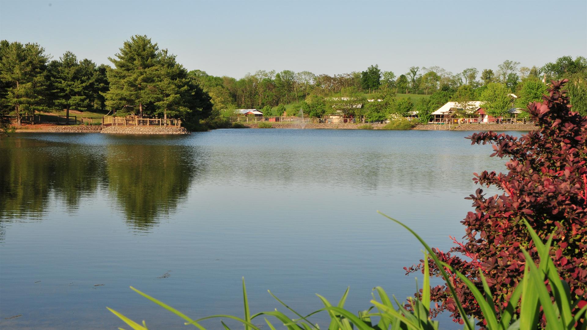 Fishing at Lake Tobias Wildlife Park