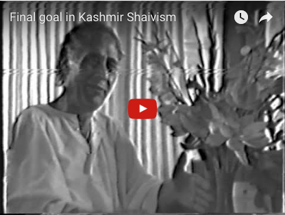 Final Goal in Kashmir Shaivism