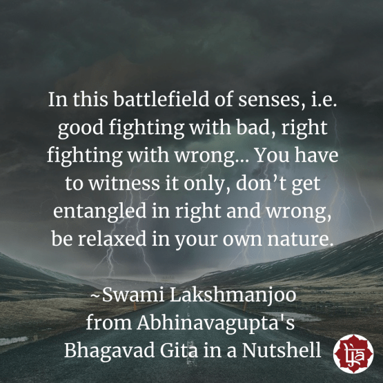 In this battlefield of senses, i.e. good fighting with bad, right fighting with wrong... You have to witness it only, don't get entangled in right and wrong, be relaxed in your own nature. ~Swami Lakshmanjoo from Abhinavagupta's Bhagavad Gita in a Nutshell
