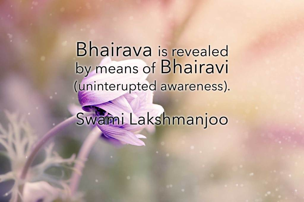 Bhairava is revealed  by means of Bhairavi (uninterupted awareness).  Swami Lakshmanjoo
